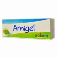 Arnigel gel 120g Boiron