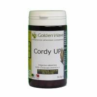 Cordy up 60 capsule 400mg Cordyceps sinensis